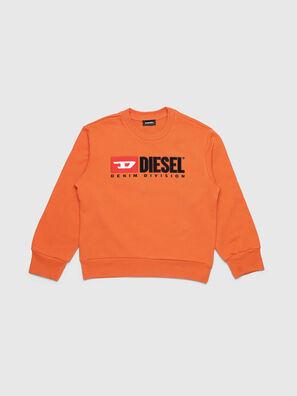 SCREWDIVISION OVER, Orange - Sweaters